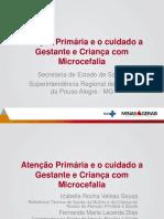 Apresentação Microcefalia - NAPRIS (12 - 2016)