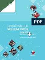 Estrategia Nacional Seguridad Pública 2006-2010.pdf