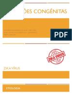 Zika, Parvovírus e Herpes