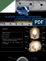 La Calota_lesiones y Variantes de La Normalidad
