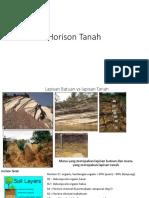 Horison Tanah