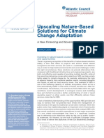 Upscaling Nature-Based Solutions for Climate Change Adaptation