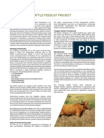 cattle-feedlot-project.pdf