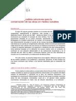 Problemas y Posibles Soluciones Para La Conservación de Las Obras en Medios Variables
