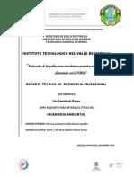 Informe Técnico Final 2 7 1 3 1 1 1 (1)