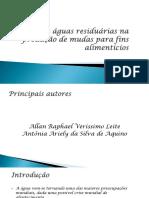SLIDES DE AGUAS RESIDUARIAS.pptx