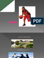 Presentacion de Diapositivas Comfrem