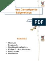 Agentes Cancerígenos Epigenéticos