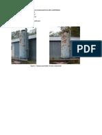 PRACTICA Nro 1. PULMON DE AIRE COMPRIMIDO.pdf