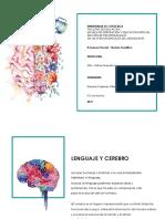 Lenguaje y Cerebro Revista