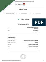 pago internet 1.pdf
