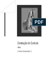 etapas-na-construcao-do-curriculo.pdf