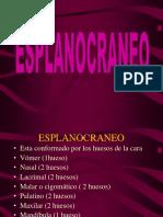 Nº4-El.esplagnocráneo.pdf