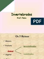 In Vertebra Dos dos Prof.fabio
