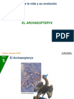 03 Archaeopteryx