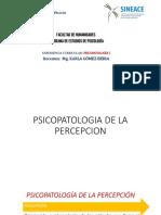 Psicopatologia de La Percepcion