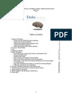 Summary Sensory, Motor Systems, Medical Neuroscience