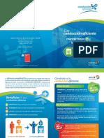 CE_Diptico_Carga.pdf