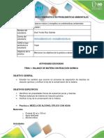 Pre Informe_ Viani Ruiz