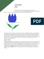C.5 Plano Cartesiano.pdf