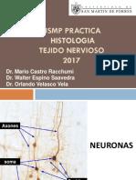 Usmp Practica - Histologia 2017- Tejido Nervioso