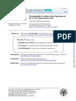 Prostaglandin E2 Induces the Expression of IL1 in Colon