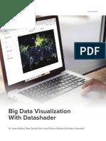 Big Data Visualization With Datashader Whitepaper