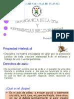 CITAS BIBLIOGRAFICAS APA.pptx