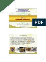 Tema 2.1 (a) Recursos Minerales