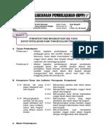 RPP Teks Biografi Lesson Study