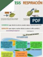 fotosintesisyrespiracioncelular-140520082345-phpapp02.pptx