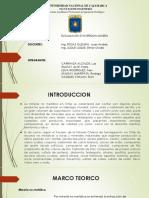 Proyectos Mineros No Metálicos en Chile