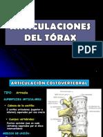 2 Anatomia- Articulaciones Del Tórax