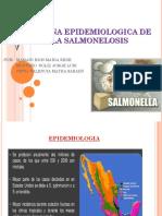 Cadena Epidemiologica de La Salmonelosis.