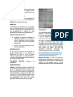 Informe de Bioquímica de Uso e implemento de laboratorio.