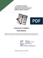 Trabajo Gerardo García.ensayo Fuero Sindical