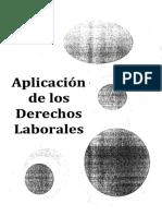 Aplicacion de los derechos laborales.pdf