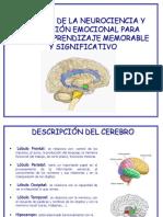 aportes neurociencia