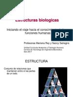 Estructuras Introducción 11.08.17
