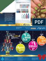 Catalogo-uñas-decorativas-Diciembre