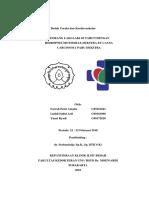 Presentasi Kasus BTKV