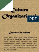 11- Cultura e Clima Organizacional
