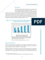 Texto 07 Determinantes Sociales de La Salud en El Perú