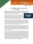 Informe Preliminar Moe Honduras 2017 4dic