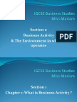 IGCSE BS Chapter1 Business Activity MK