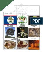 simbolosdecentroamerica-140905213251-phpapp01