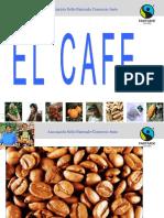 2011 Cafe Basico