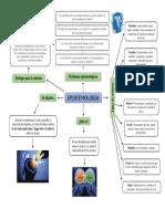 Espistemologia Mapa Mental