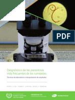 Manual Diagnostico final.pdf