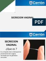secrecion_vaginal__110__0